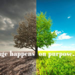 Time, Persistence & Patience: Making Changes on Purpose